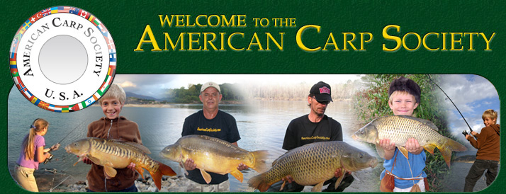 Why isn't Carp fishing in the USA as popular as it is in Europe?